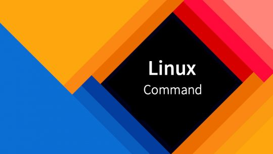 Linux的常用命令
